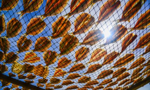 Dried fishes by heat from direct sunlight.